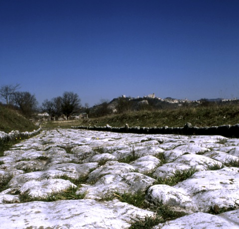area archeologica sentinum