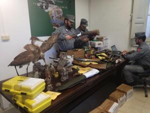 Maxi sequestro carabinieri forestali di Sassoferrato cacciatori di frode bracconaggio